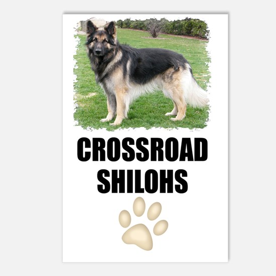 iphone-3g-crossroad Postcards (Package of 8)