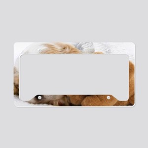 shih tzu S print License Plate Holder