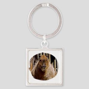 (16) Capybara Staring Square Keychain