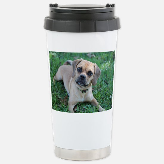 IMG_4116_a Stainless Steel Travel Mug