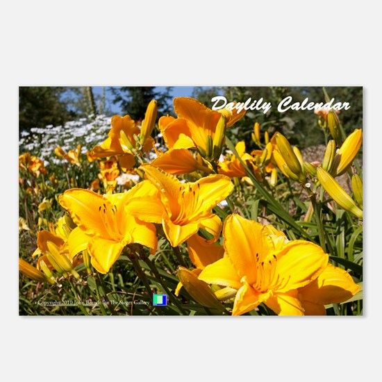 Daylily Sparkling Orange Postcards (Package of 8)