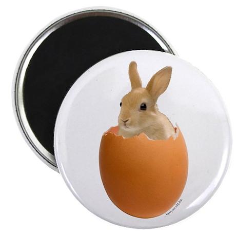 "Bunny Egg 2.25"" Magnet (100 pack)"