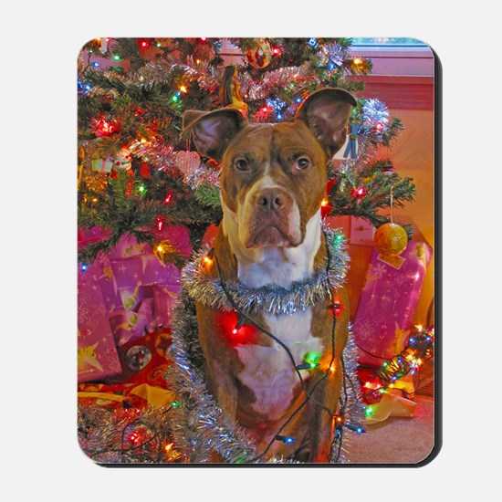 pitbull christmas card Mousepad