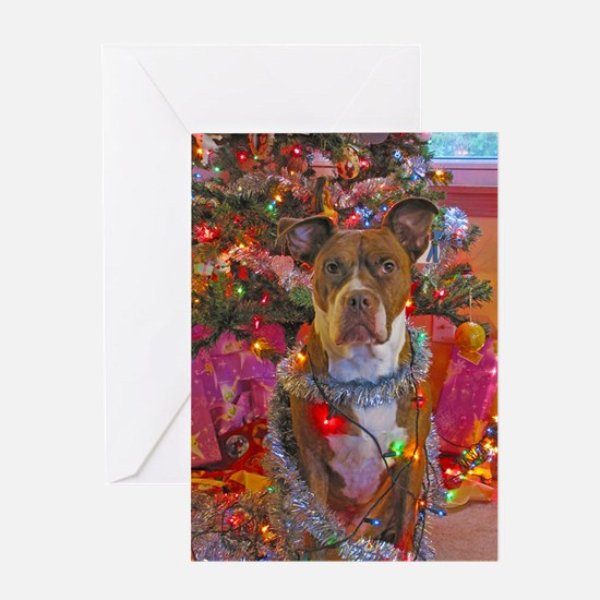 pitbull christmas card Greeting Card
