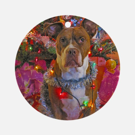 pitbull christmas card Round Ornament
