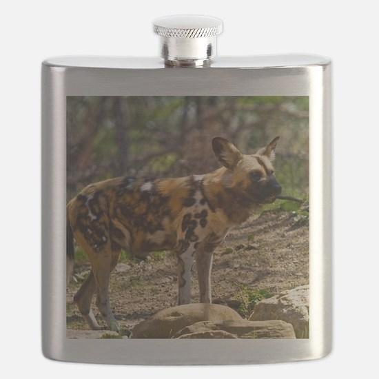 (2) African Wild Dog  1932 Flask