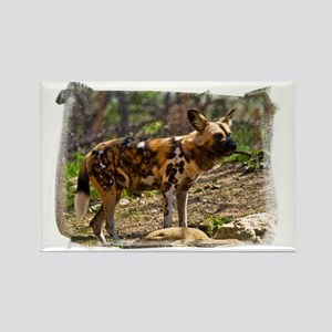 (16) African Wild Dog  1932 Rectangle Magnet