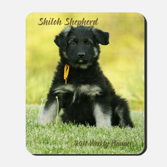 11-cover_goldie Mousepad