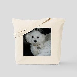 Sasha-II-FEB-27-2010 Tote Bag