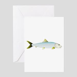 Bonefish Greeting Cards