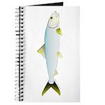 Bonefish Journal