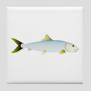 Bonefish Tile Coaster