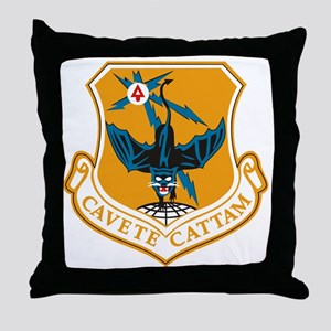 553rd Recon Wing Throw Pillow