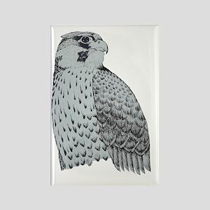 Falcon2 Rectangle Magnet
