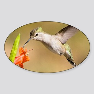 Hummers 171wallcalendarcopy Sticker (Oval)