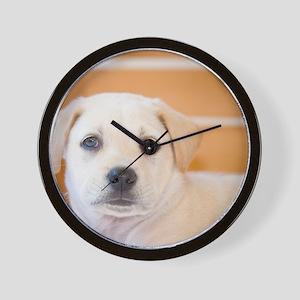 LabPuppy-16 Wall Clock