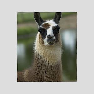 llama1_lframe Throw Blanket