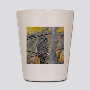 9x12_print 2 Shot Glass