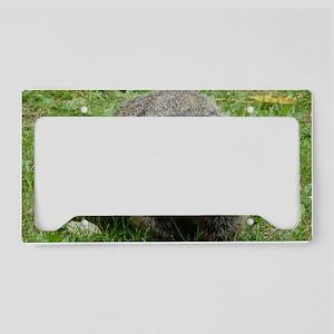 GrdHg4.58x2.91 License Plate Holder