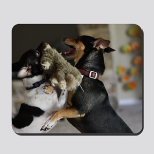 Playful Rat Terrier Dogs Mousepad