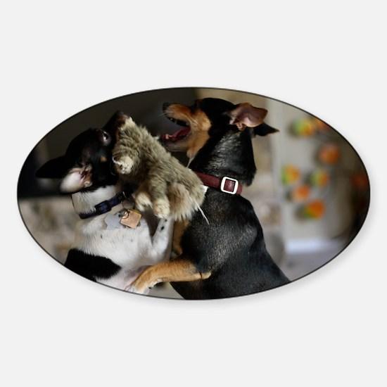 Playful Rat Terrier Dogs Sticker (Oval)