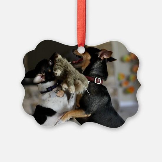 Playful Rat Terrier Dogs Ornament