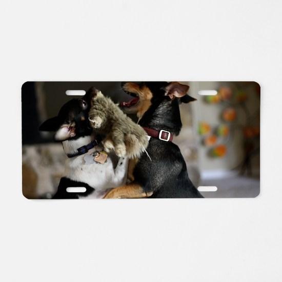 Playful Rat Terrier Dogs Aluminum License Plate