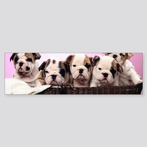 Fat Puppies Gifts Cafepress