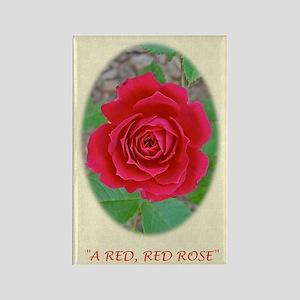Love, Romance, Classical Poem, Po Rectangle Magnet