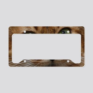gidgeyrect License Plate Holder