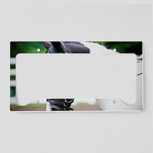 Horse License Plate Holder