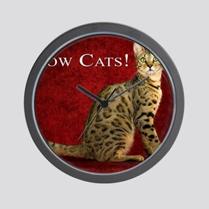 Show Cats Cover Wall Clock