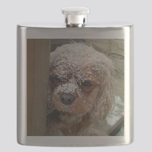 Ruby Cavalier King Charles Spaniel with snow Flask