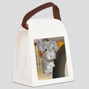 Twilight - 10x10 Canvas Lunch Bag