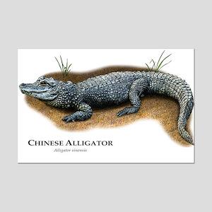 Chinese Alligator Mini Poster Print