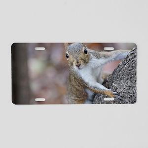 Juvenile Squirrel Up Aree Aluminum License Plate