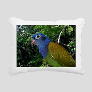 1pionuscalendar Rectangular Canvas Pillow