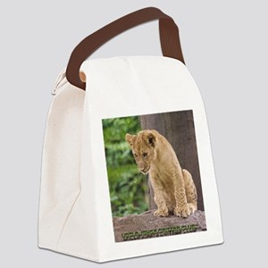 3x3_bear-lion-cub-bronx-zoo Canvas Lunch Bag