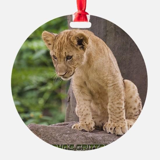 3x3_bear-lion-cub-bronx-zoo Ornament