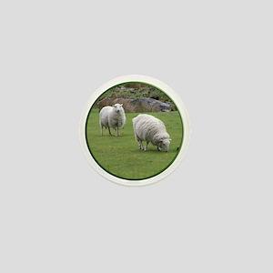 Sheep CirStrk Mini Button