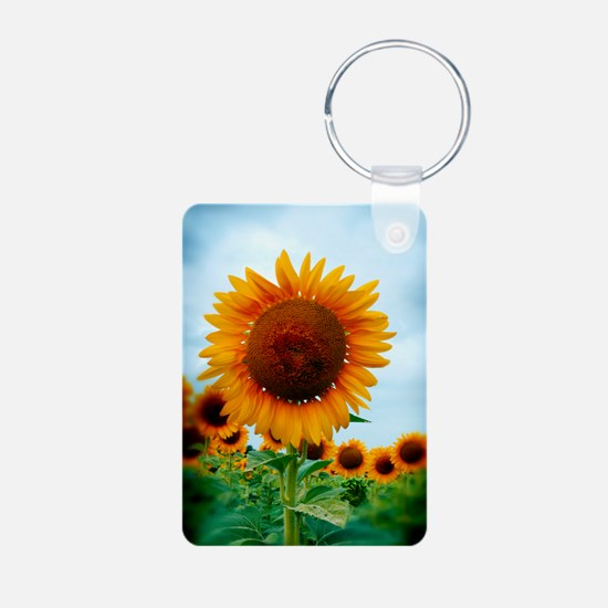 journal_daydreaming Keychains