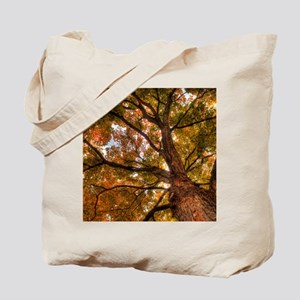 tile_Fall Canopy Tote Bag