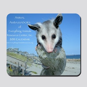Everything Animals calendar cover Mousepad