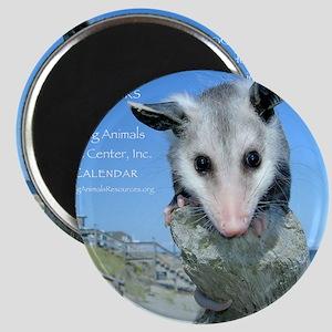Everything Animals calendar cover Magnet
