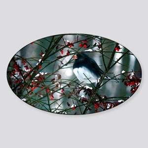junco w berry  Sticker (Oval)