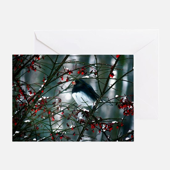 junco w berry  Greeting Card