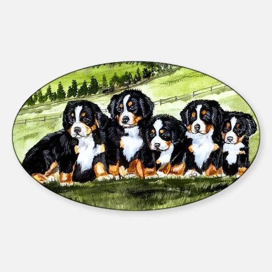 berner farm pups Sticker (Oval)