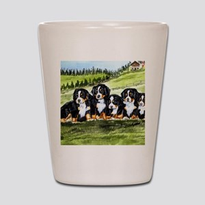 berner farm pups Shot Glass