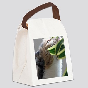 801p1) Holly april 09  077 Canvas Lunch Bag
