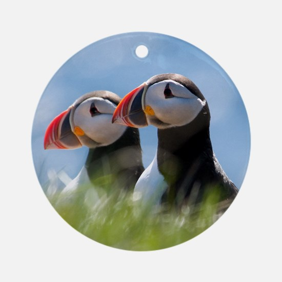 Puffin Pair 7.355x9.45 Round Ornament